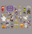 set halloween sign symbol and characters vector image