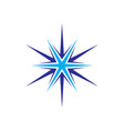 star compass vector image vector image