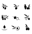 olive icons set vector image