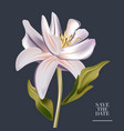 botanical watercolor magnolia flower wedding vector image vector image