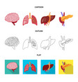 design of biology and scientific icon vector image