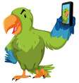 Green parrot taking selfie with phone vector image