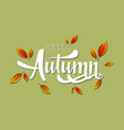 hello autumn lettering with leaves vector image
