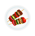kebabs on plate roasted meat - lamb pork vector image vector image