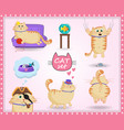 set of cute cartoon cat in life situations on vector image vector image
