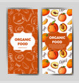 set of organic fruits cards hand drawn sketch vector image vector image