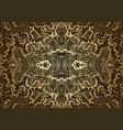 vintage psychedelic fractal mandala pattern vector image
