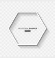 white abstract hexagonal banner template vector image vector image