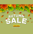 autumn sale background with falling leaves vector image