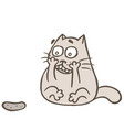 cat and rabid cucumber vector image