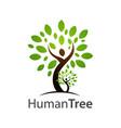 human tree logo concept design symbol graphic vector image vector image