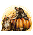 little kittens and pumpkins in a watercolor style vector image
