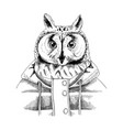 hand drawn dressed up owl in hipster style vector image
