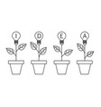 lamp light bulb plant in the pot growing idea vector image vector image