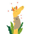 poster with cute koala hugging smiling giraffe vector image vector image