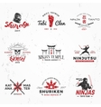 Set of Japanese Ninjas Logo Katana master vector image vector image