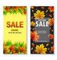set of two autumn sale banners vector image
