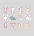 cute rabbits design vector image