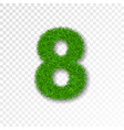 grass number eight green number 8 isolated on vector image