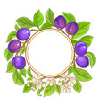 plum branches frame on white background vector image vector image