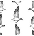 seamless pattern sketches flying sea gulls vector image