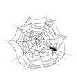 set spider web different shapes with black vector image vector image