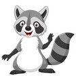 cartoon happy raccoon isolated on white background vector image vector image