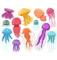 cartoon ocean jellyfish marine underwater vector image vector image
