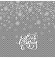 falling holidays decoration snow isolated vector image