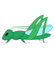 green grasshopper on white background vector image vector image