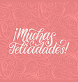 muchas felicidades translated from spanish vector image