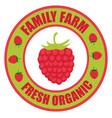 raspberries logo vector image vector image