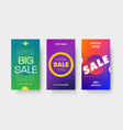 set color gradient templates for mobile vector image vector image