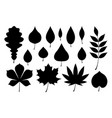 set of black autumn leaves vector image