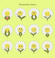 chamomile stickers with emotions vector image vector image