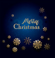 christmas typographical on shiny background vector image vector image