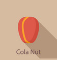 cola nut icon flat style vector image vector image