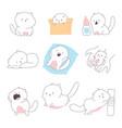 cute cats cartoon doodle vector image vector image