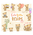 cute little bears vector image vector image