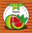 fresh healthy watermelon fruit vector image vector image