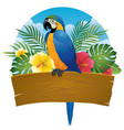 blue and gold macaw sit on wooden banner vector image vector image