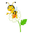 cartoon happy bee with a flower vector image vector image