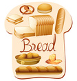 different kind bread vector image vector image