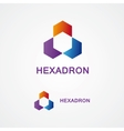 hexagon design logo vector image