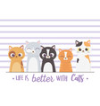 life is better with cats lettering portrait vector image