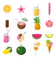 set of tropical cute summer icons fruits ice vector image vector image