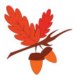 two oak nuts with red leaves on branch print on vector image