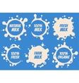 Splash and blot milk labels set Design vector image