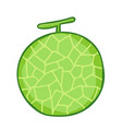 cantaloupe isolated vector image vector image