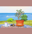 coffee and olive tree at summer sea background vector image vector image